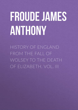 History of England from the Fall of Wolsey to the Death of Elizabeth. Vol. III