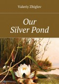 Our Silver Pond