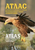 Атлас млекопитающих и птиц Национального парка «Припятский». Atlas of Mammals and Birds of National Park «Pripyatsky»