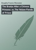 The Bradys After a Chinese Princess: or, The Yellow Fiends of 'Frisco