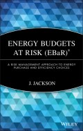 Energy Budgets at Risk (EBaR). A Risk Management Approach to Energy Purchase and Efficiency Choices