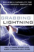 Grabbing Lightning. Building a Capability for Breakthrough Innovation