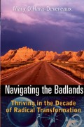 Navigating the Badlands. Thriving in the Decade of Radical Transformation