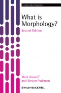 What is Morphology?