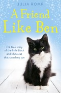 A Friend Like Ben: The true story of the little black and white cat that saved my son