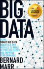Big Data. Using SMART Big Data, Analytics and Metrics To Make Better Decisions and Improve Performance